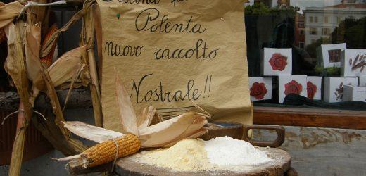 Quelle est la Différence entre la farine de maïs et la fécule de maïs