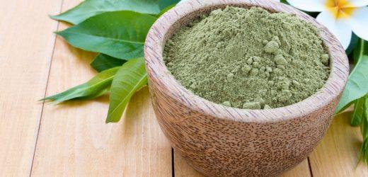 Qu'est ce que la « Lawsonia inermis » ?
