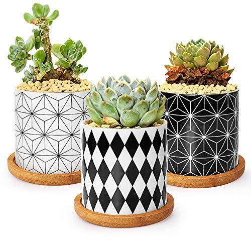 Ertisa 7.5CM Pot de Fleur, Succulent Pots de Plantes avec Plateau Bambou Lot de 3, Mini Moderne Concrete Cactus Jardinières de Fleurs, Décoration de Maison Jardin Bureau Cadeau